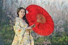 asian-1822517__340 Japan